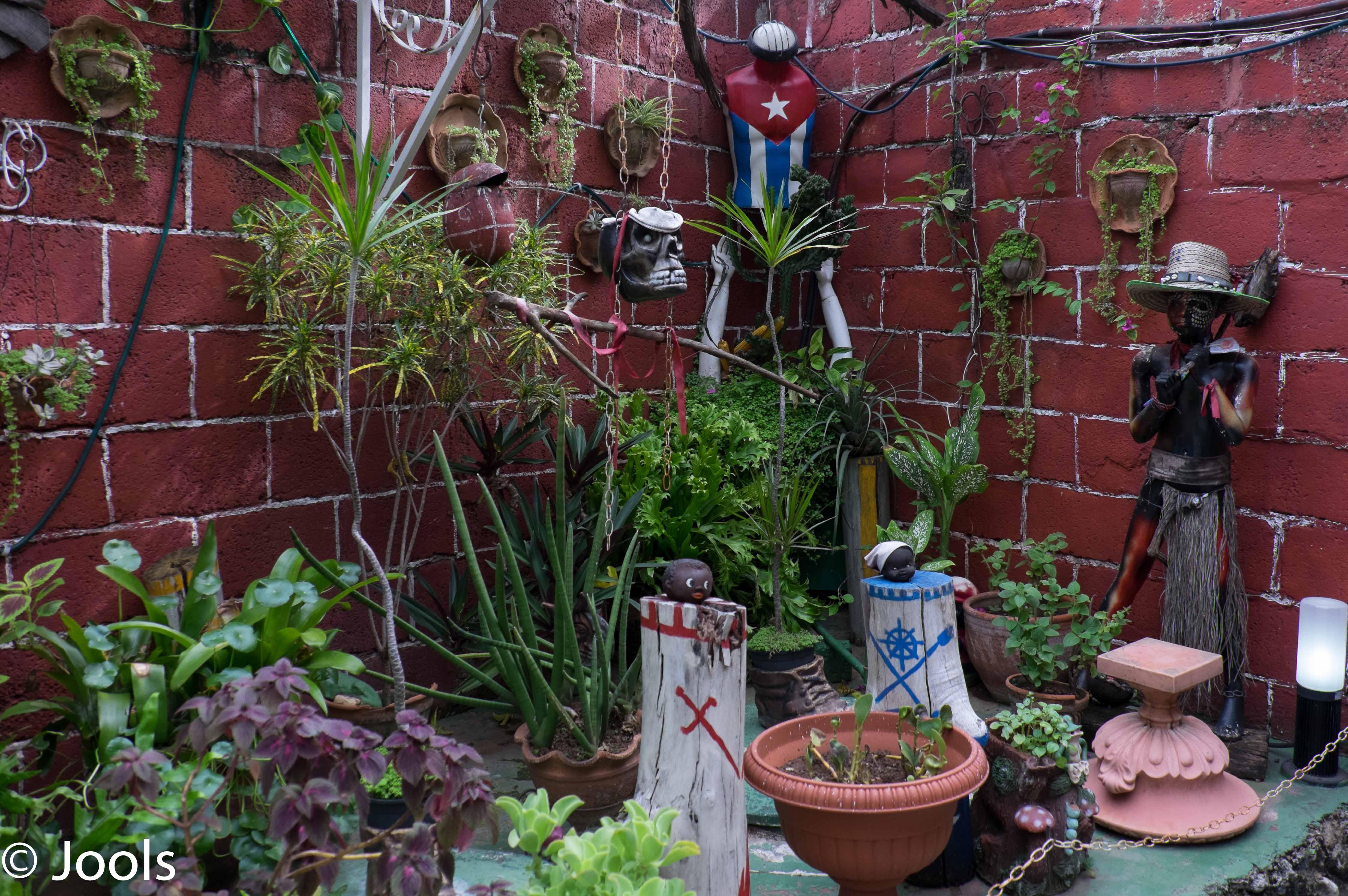 Dollhead garden Cuba lowres